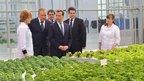 Дмитрий Медведев посетил ООО «Новгородские теплицы»