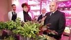 Михаил Мишустин посетил тепличный комплекс по выращиванию овощей защищённого грунта в Анадыре