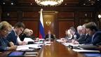Заседание президиума Совета при Президенте Российской Федерации по стратегическому развитию и национальным проектам