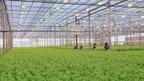 О поддержке агропромышленного комплекса