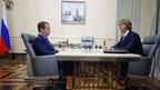 Встреча Дмитрия Медведева с председателем совета директоров ПАО «Соллерс» Вадимом Швецовым