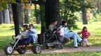 О ходе реализации Концепции демографической политики