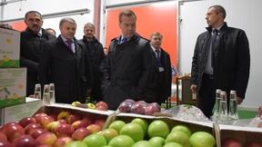 Посещение агрокомплекса «Сад-гигант Ингушетия» в станице Нестеровской