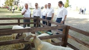 Посещение крестьянско-фермерского хозяйства «ИП Ильченко Ю.В.»