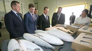 Поездка Дмитрия Медведева на Сахалин