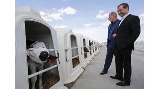 Посещение сельскохозяйственного предприятия «Заречное»