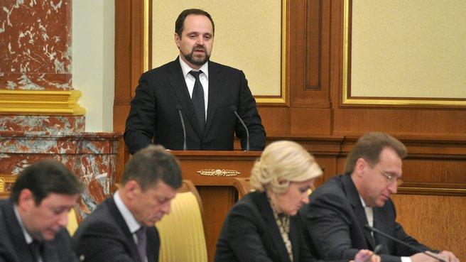 Министр природных ресурсов и экологии Сергей Донской на заседании Правительства