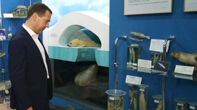 Посещение Байкальского музея Сибирского отделения Российской академии наук