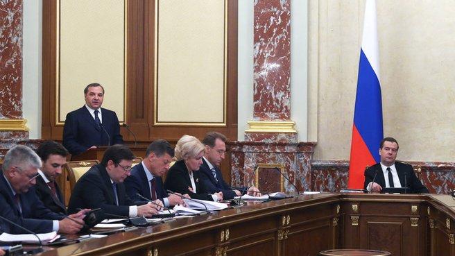 Доклад главы МЧС Владимира Пучкова на заседании Правительства