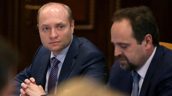 Министр по развитию Дальнего Востока Александр Галушка и глава Минприроды Сергей Донской