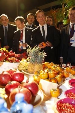 Посещение Сельскохозяйственного научно-исследовательского центра имени Волкани