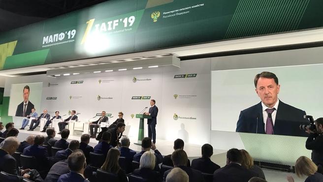 Алексей Гордеев принял участие в работе I Международного агропромышленного форума