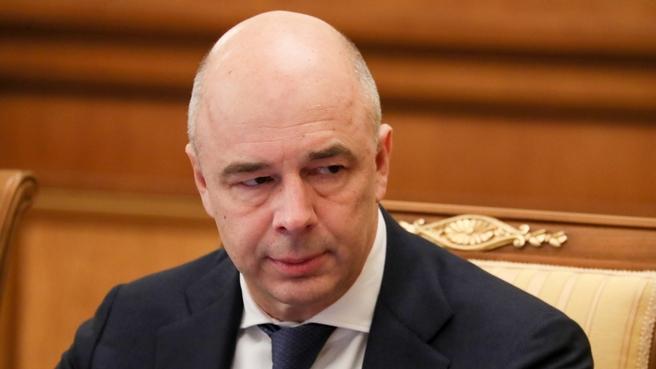 Антон Силуанов  на заседании Правительства