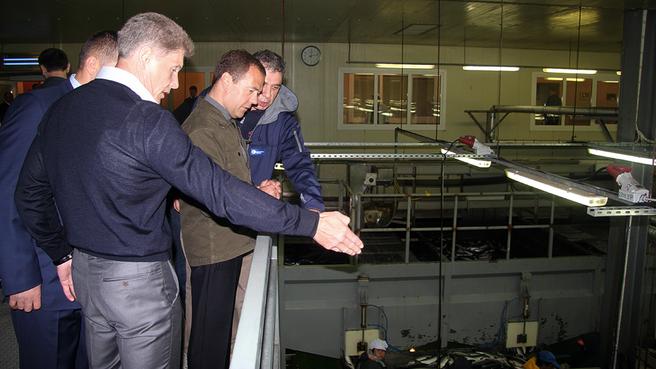 Посещение рыбоперерабатывающего завода «Рейдово». С временно исполняющим обязанности губернатора Сахалинской области Олегом Кожемяко