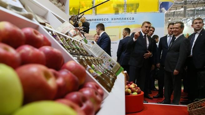 Осмотр экспозиции 20-й российской агропромышленной выставки «Золотая осень»