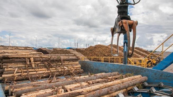Устьянский лесопромышленный комплекс. Лесоперерабатывающий завод