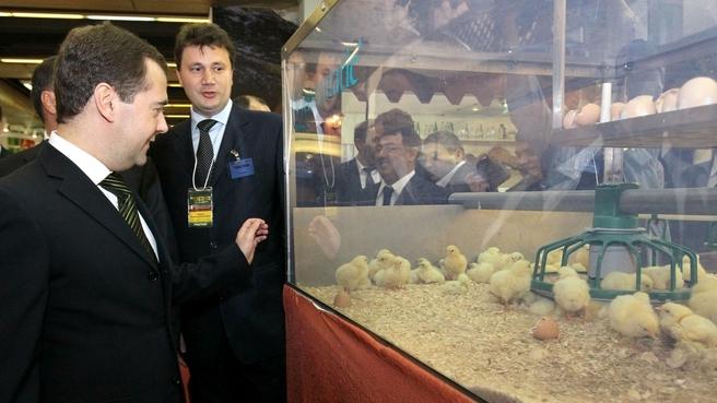 Посещение Российской агропромышленной выставки «Золотая осень–2012»