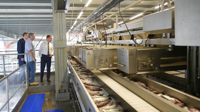 Посещение рыбоперерабатывающего завода «Ясный»